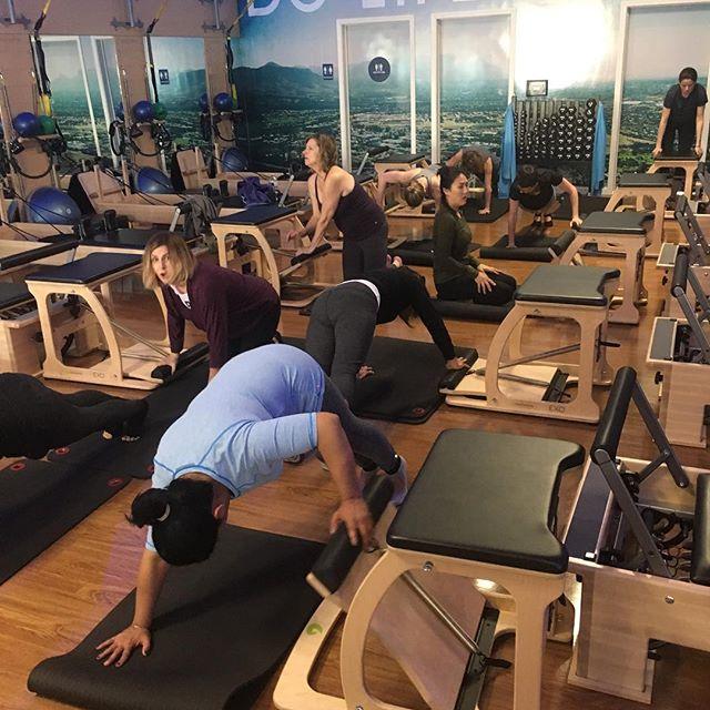 Just mayhem. That moment when you realize you've lost all control #chaos #pilatesoverload #pilates #pilatesteacher #mypilatesstyle #isitoveryet #pilatesclass #wundachair #gracefulpilates #nofilter